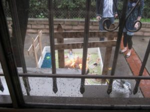 Set it up outside my kitchen window, for partygoers to see.